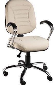 Cadeira Diretoria PD13