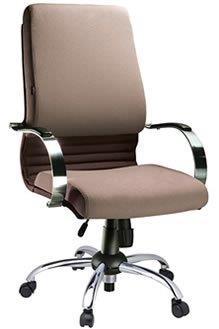 Cadeira Diretoria PD17