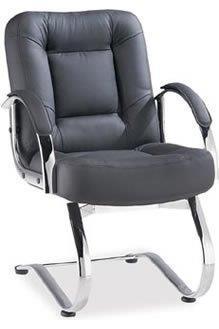 Cadeira Diretoria PD2