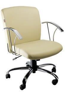 Cadeira Diretoria PD25