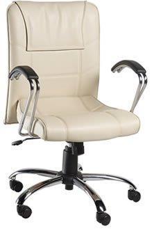 Cadeira Diretoria PD27
