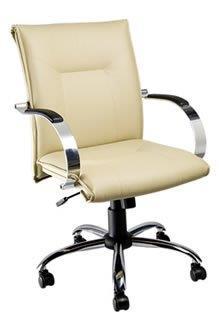 Cadeira Diretoria PD5