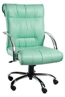 Cadeira Diretoria PD7
